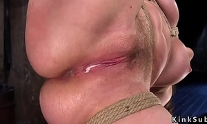 Hogtied spoil gets feet and anal tormented