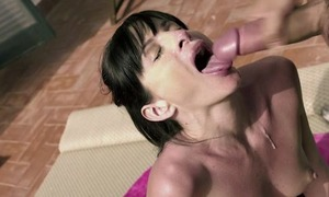 Cock hungry vixen gets a good soreness she's been dream all fixture long